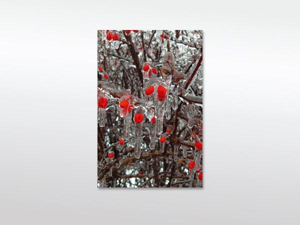 Leinwandbild Beeren in Eis mit oder ohne Schattenfugenrahmen