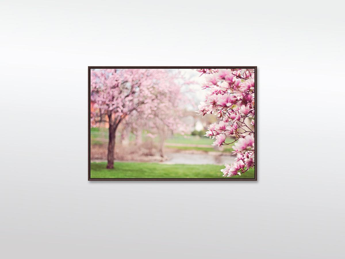 Leinwandbild XXL Magnolia Bäume in verschiedenen Größen mit Schattenfugen-Rahmen, braun